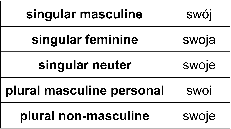 The No Nonsense Guide To Polish Possessive Pronouns Clozemaster